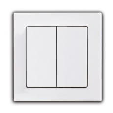 55F- Face Double Switch with 55mm Panel-White
