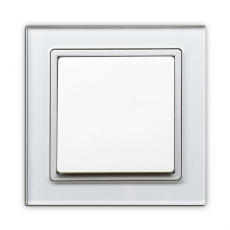 55FT - Fortune Single Switch with White Glass Frame,55 panel