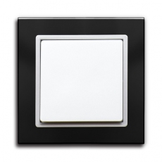 55FT - Fortune Single Switch with Black Glass Frame,55 panel