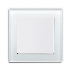 55F- Face Glass Single 2-Way Switch
