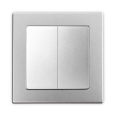 Face Double 2-way Switch with 55mm Panel-Silver